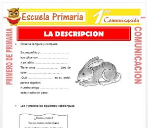 Ficha de La Descripcion para Primero de Primaria