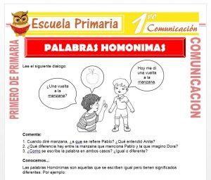 Ficha de Palabras Homonimas para Primero de Primaria