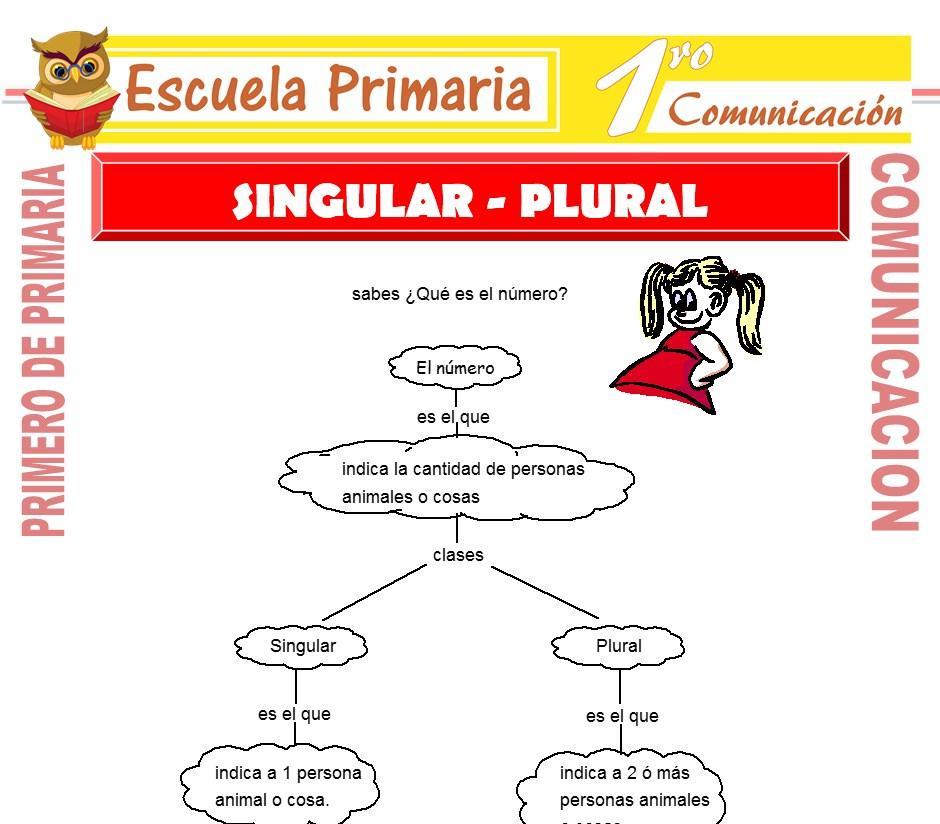 Ficha de Singular y Plural para Primero de Primaria