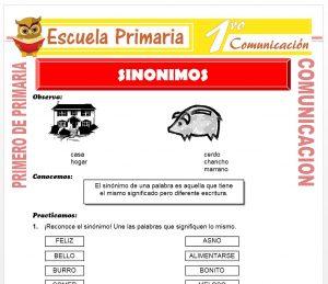 Ficha de Sinonimos para Primero de Primaria