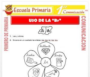 Ficha de Uso de la BR para Primero de Primaria