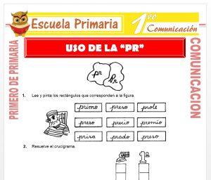 Ficha de Uso de la PR para Primero de Primaria