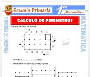 Ficha de Calculo de Perimetros para Primero de Primaria