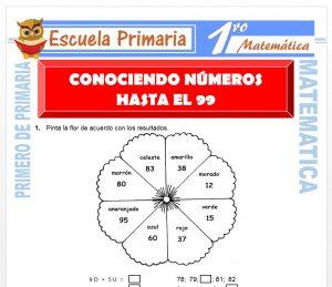 Ficha de Conociendo Numeros Hasta el 99 para Primero de Primaria