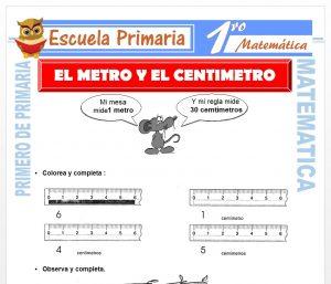 Ficha de El Metro y El Centimetro para Primero de Primaria