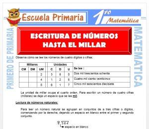 Ficha de Escritura de Numeros Hasta el Millar para Primero de Primaria