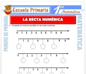 Ficha de La Recta Numérica para Primero de Primaria