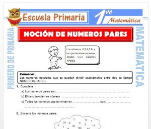 Ficha de Nocion de Numeros Pares para Primero de Primaria