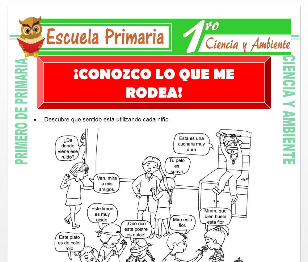 Ficha de Conozco lo que me Rodea para Primero de Primaria