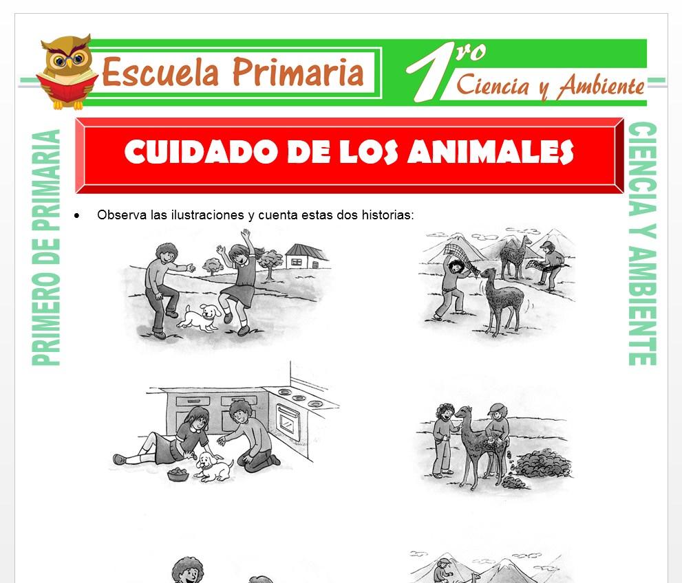 Ficha de Cuidado de Los Animales para Primero de Primaria