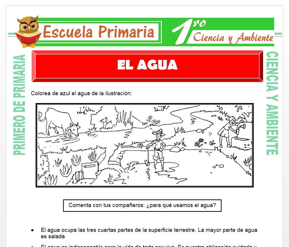 Ficha de El Agua para Primero de Primaria