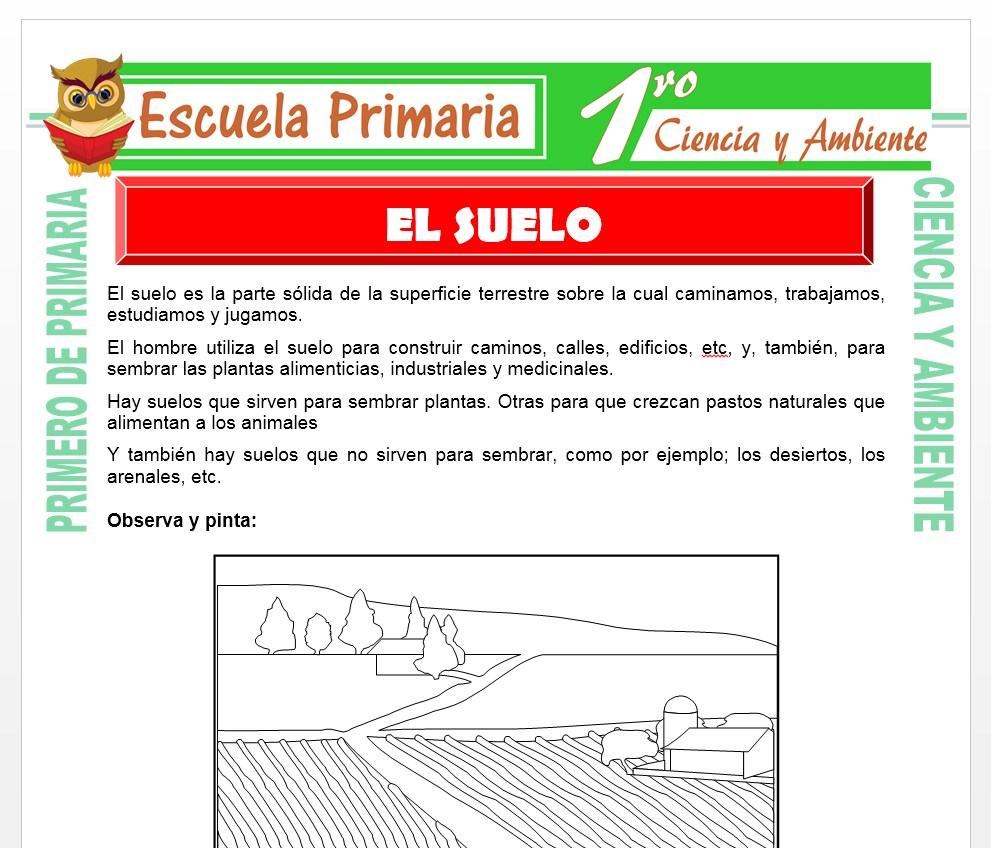 Ficha de El Suelo para Primero de Primaria