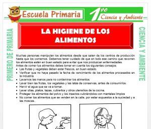 Ficha de La Higiene de Los Alimentos para Primero de Primaria