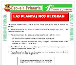Ficha de Las Plantas nos Alegran para Primero de Primaria