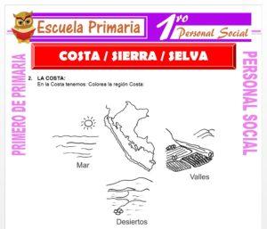 Ficha de Costa Sierra y Selva para Primero de Primaria
