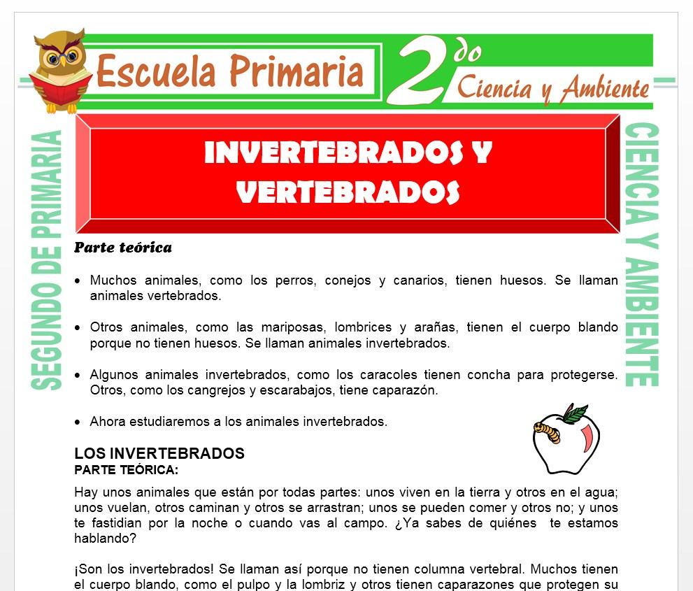 Ficha de Invertebrados y Vertebrados para Segundo de Primaria