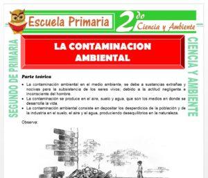 Ficha de La Contaminación Ambiental para Segundo de Primaria