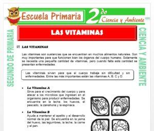 Ficha de Las Vitaminas para Segundo de Primaria