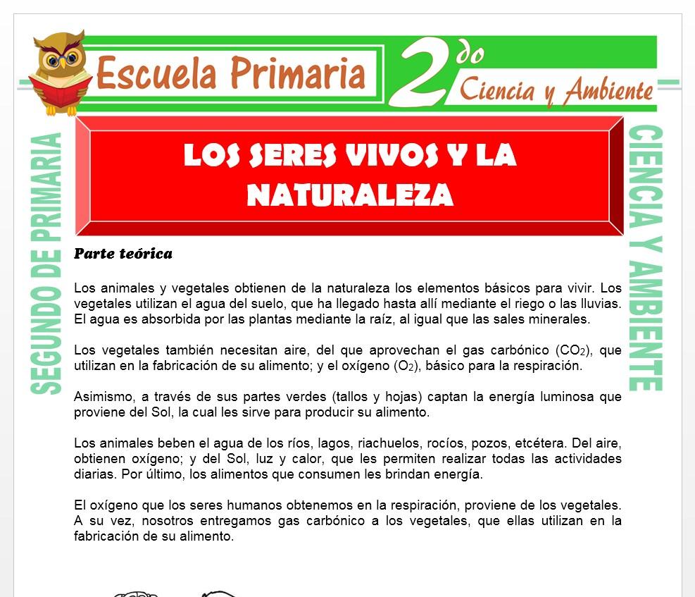 Ficha de Los Seres Vivos y la Naturaleza para Segundo de Primaria