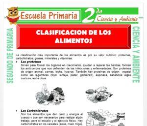 Ficha de Tipos de Alimentos para Segundo de Primaria