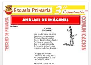 Ficha de Analisis de Imágenes para Tercero de Primaria