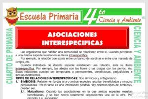 Ficha de Asociaciones Interespecificas para Cuarto de Primaria