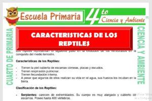 Ficha de Características de Los Reptiles para Cuarto de Primaria
