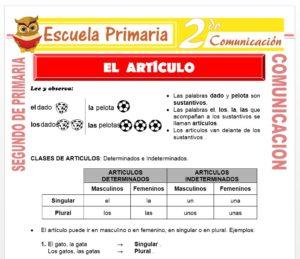 Ficha de Clases de ArtÍculos para Segundo de Primaria