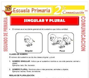 Ficha de Clases de Números para Segundo de Primaria