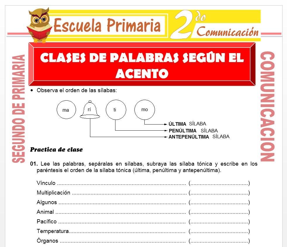 Ficha de Clase de Palabras para Segundo de Primaria