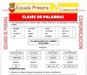 Ficha de Clases de Palabras para Segundo de Primaria