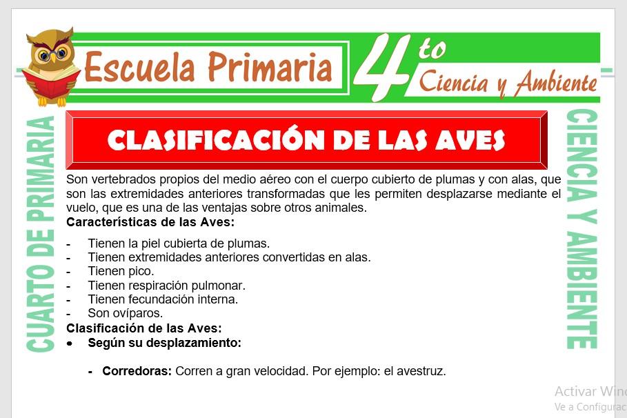 Ficha de Clasificacion de Las Aves para Cuarto de Primaria