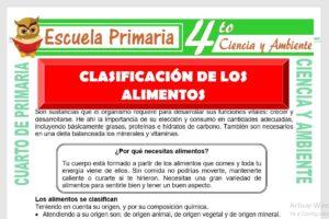 Ficha de Clasificacion de Los Alimentos para Cuarto de Primaria