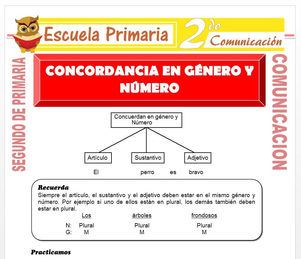 Ficha de Concordancia en Genero y Numero para Segundo de Primaria
