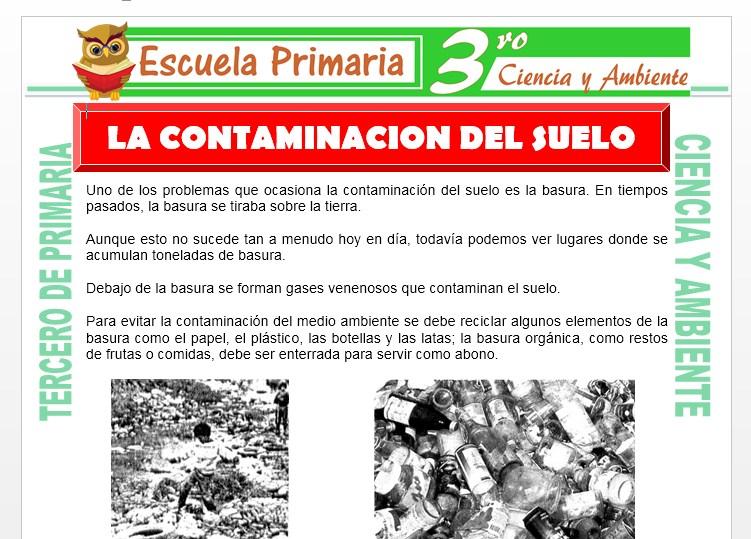 Ficha de Contaminacion del Suelo para Tercero de Primaria