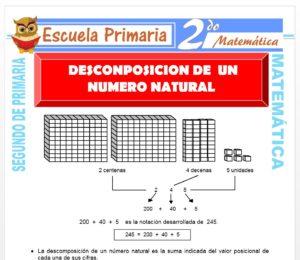 Ficha de Descomposición del Numero Natural para Segundo de Primaria