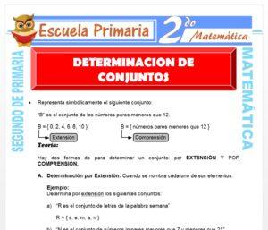 Ficha de Determinación de Conjuntos para Segundo de Primaria