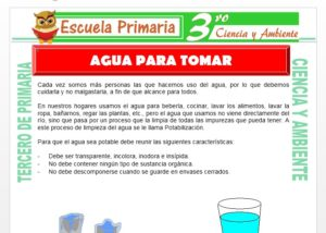 Ficha de El Agua para Tomar para Tercero de Primaria