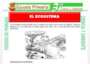 Ficha de El Ecosistema para Tercero de Primaria