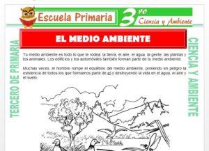 Ficha de El Medio Ambiente para Tercero de Primaria