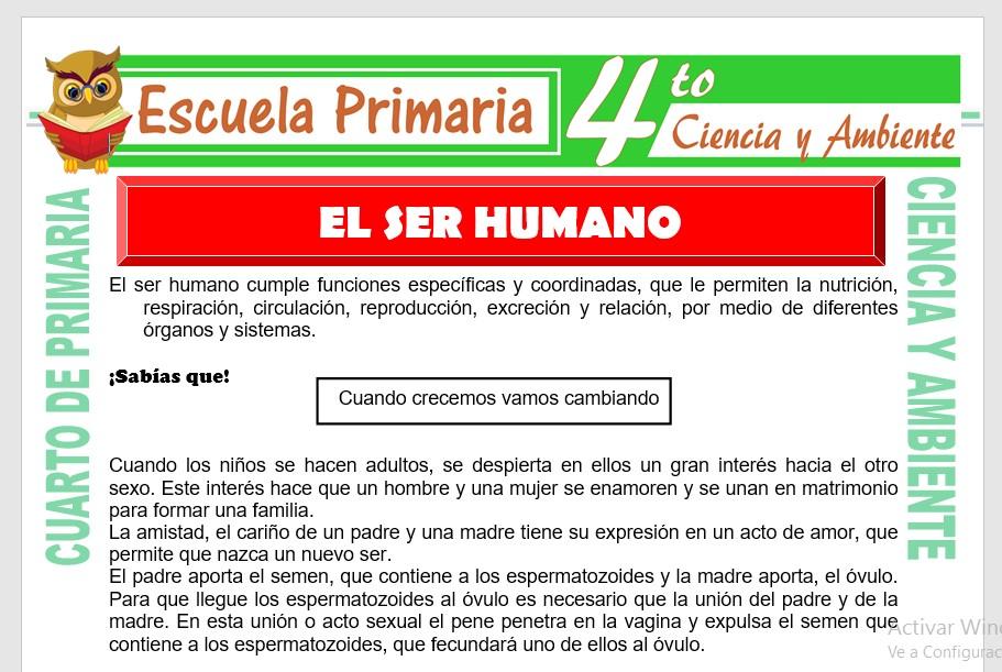 Ficha de El Ser Humano para Cuarto de Primaria