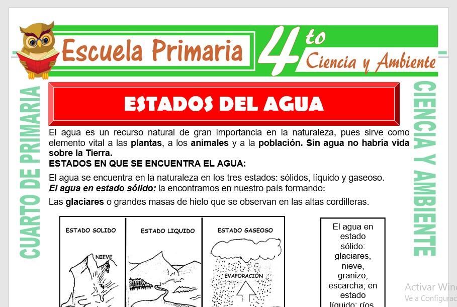 Ficha de Estados del Agua para Cuarto de Primaria