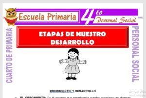 Ficha de Etapas de Nuestro Desarrollo para Cuarto de Primaria