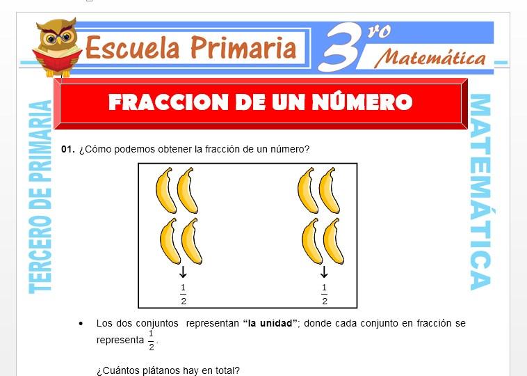 Ficha de Fracción de un Numero para Tercero de Primaria