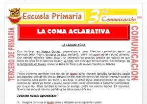 Ficha de La Coma Aclarativa para Tercero de Primaria
