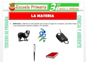 Ficha de La Materia para Tercero de Primaria