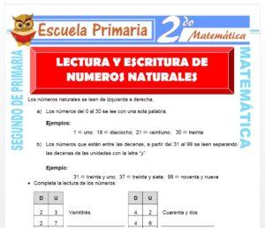 Ficha de Lectura y Escritura de Números Naturales para Segundo de Primaria