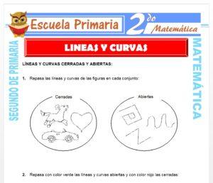 Ficha de Líneas y Curvas para Segundo de Primaria