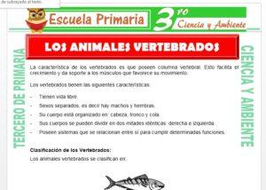 Ficha de Los Animales Vertebrados para Tercero de Primaria