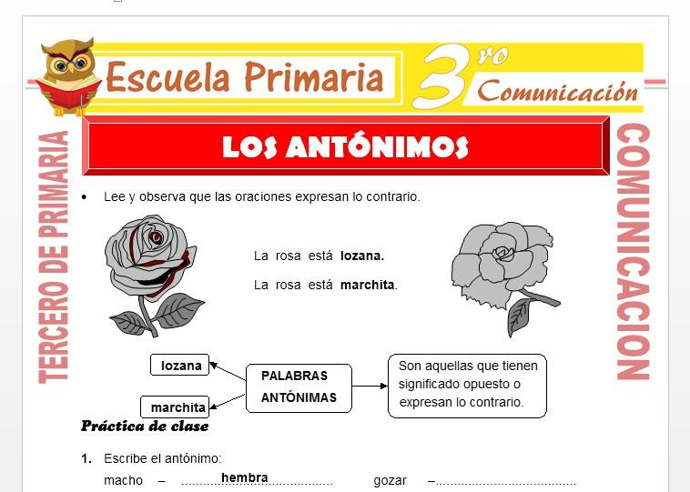 Ficha de Los Antónimos para Tercero de Primaria